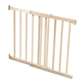 Secure Solutions Swing Gate