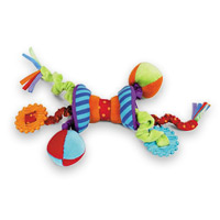 Ziggles Activity Toy and Teether