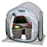 FlowerHouse 2' Planthouse