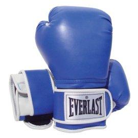 Everlast 2216 Pro Style Training Gloves (16 oz.)