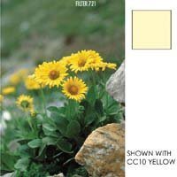 Cokin Yellow Color Correction Filter CC40Y, Series A