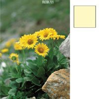 Cokin Yellow Color Correction Filter CC05Y Series A