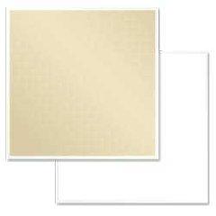 PHOTOFLEX LITEPNL 39X72 WHITE/SOFT GOLD
