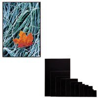 Itoya 11 x 17 Art Profolio ImagEnvelope, Poly-Glass Storage Envelope with Board.