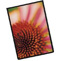 Itoya 13 x 19 Art Profolio ImagEnvelope Presentation Poly Glass Envelope.