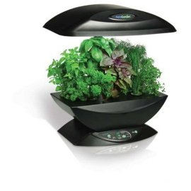 AeroGrow AeroGarden Classic with Gourmet Herb Seed Kit (Black)
