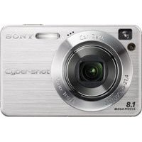 Sony Cybershot DSC-W130 8.1MP Digital Camera with 4x Optical Zoom with Super Steady Shot (Silver)