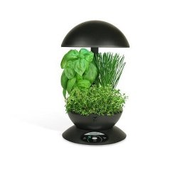 AeroGarden 3 with Gourmet Herb Seed Kit (Black)