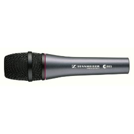 Sennheiser e865 Lead Vocal Condenser Microphone