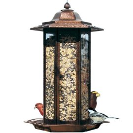 Birdscapes® 366 Tall Tulip Garden Latern Feeder, 6 lb capacity (Colors May Vary)