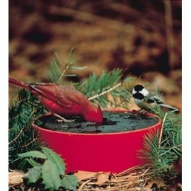 Wild Bird Deluxe Solar Sipper (Red)