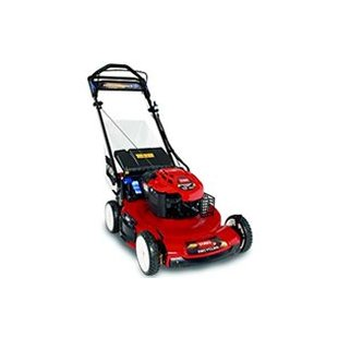 Toro Recycler 22 Personal Pace Briggs & Stratton 190cc Lawn Mower with Electric Start (20334)