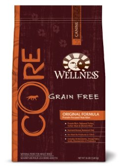 Wellness Core Grain-Free Dry Dog Food for Adult Dogs (26-Pound Bag)