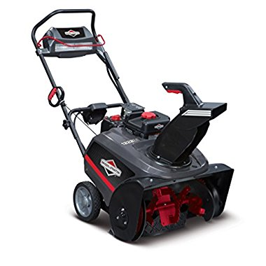 Briggs & Stratton 22 250cc Single Stage Electric Start Gas Snow Thrower (1696741)
