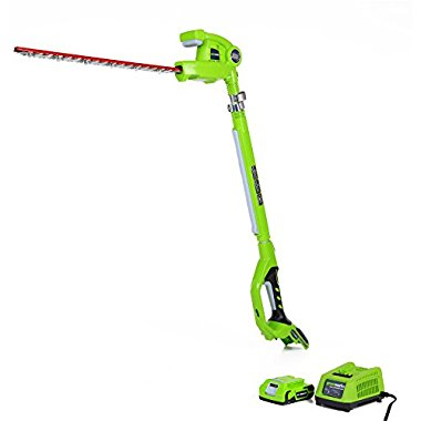 GreenWorks 22242 24V 20 Cordless Pole Hedge Trimmer, 2Ah Battery and Charger Included