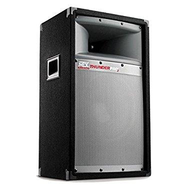 MTX Thunder Pro2 10 2-Way 200-Watt Full-Range Cabinet Loudspeaker