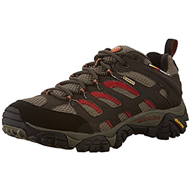 Merrell Men's Moab Gore-Tex Hiking Shoe (2 Color Options)